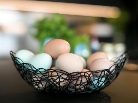 farm-fresh-free-range-eggs